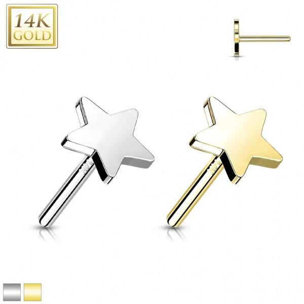 14 Karat Gold Stern flach mit Push-In Stab Gelgbold Weißgold